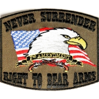 Never Surrender 2nd Amendment Patch In Army Green Color | US Military Veteran Patches