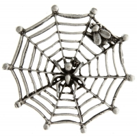 Spider Web And Fly Pin