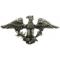 Eagle Crown Pin
