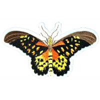 Pretty Moth Butterfly Iron on Patch