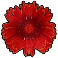 Red Orange Flower Patch